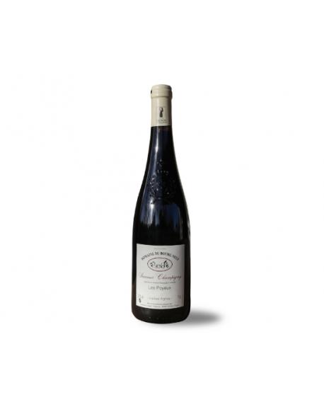 Domaine du Bourgneuf Saumur Champigny Vieilles vignes 2016